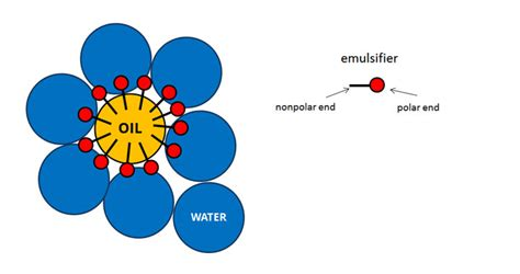 molecular cuisine emulsions class