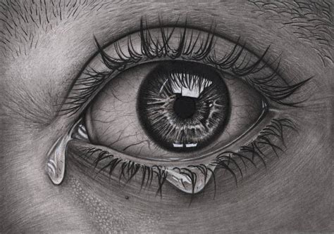 eye graphite  charcoal drawing   tacular artist