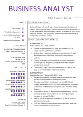 operations manager resume exle writing tips rg