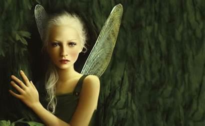 Fairy Fantasy Fairies Wallpapers Forest Woman Desktop