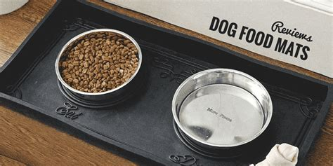 Best Doormats For Dogs by 5 Best Food Mats For Eaters 2018 Update