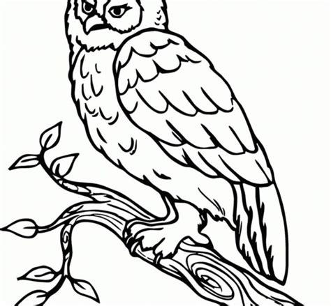 gambar sketsa tas yang mudah 160 sketsa gambar pohon yg