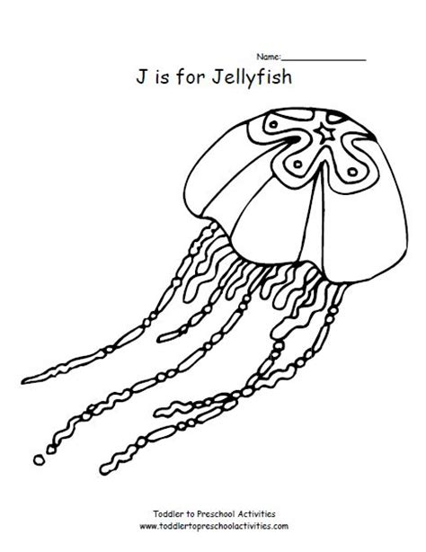 jellyfish coloring page kids coloring pages