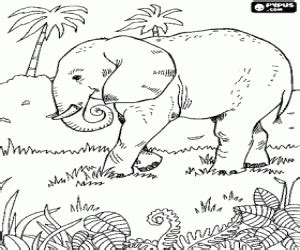 juegos de elefantes  colorear imprimir  pintar