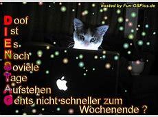 Dienstag Sprüche Bild Facebook BilderGB BilderWhatsapp