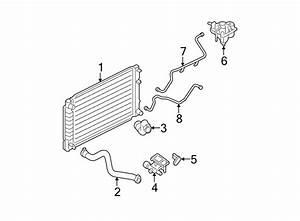 Ford Escape Radiator Coolant Hose  2 3 Liter  Escape