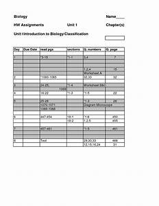 11 Best Images Of Codon Worksheet Answer Key