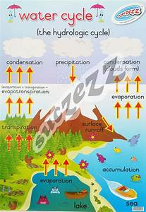 poster water cycle suczezz