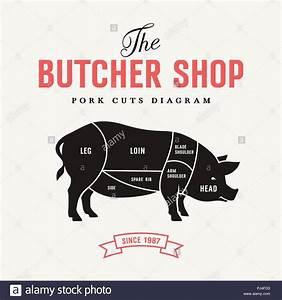 Cuts Pork Butcher Cuts Diagram Stock Photos  U0026 Cuts Pork