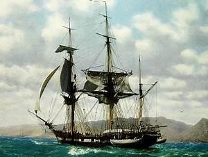 Bayou Renaissance Man: The voyage of HMS Beagle, redux