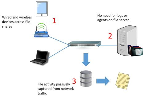 auditing file access  file servers netfort