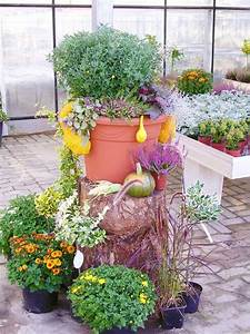 Alles Für Den Balkon : g rtnerei meyer in syke herbstpflanzen f r garten und balkon ~ Bigdaddyawards.com Haus und Dekorationen