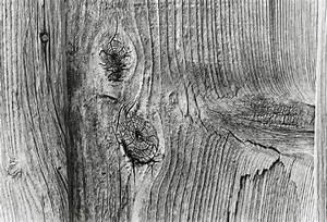 Betonplatten Mit Holzstruktur : holzstruktur mit nagel foto bild sonstiges techniken kamera techniken bilder auf fotocommunity ~ Markanthonyermac.com Haus und Dekorationen