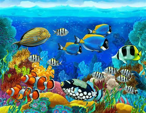 sea seabed fish corals underwater ocean tropical