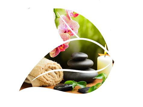 bamboo wall png spa transparent spa png images pluspng
