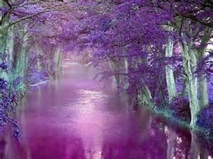 Beautiful Purple Nature