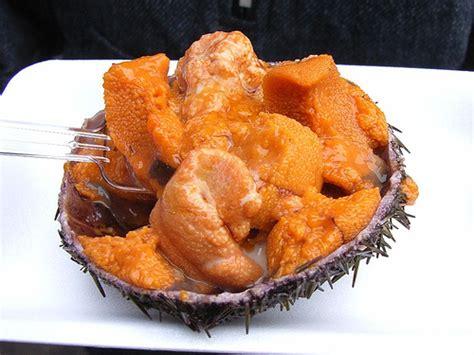 Sea Urchin – A Seafood Delicacy