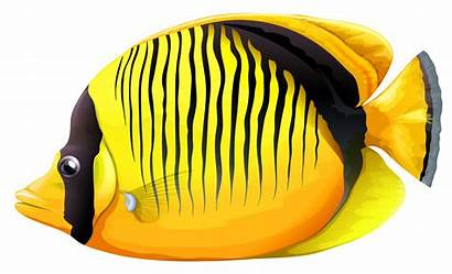 Fish Clipart Butterfly Yellow Butterflyfish Transparent Tropical