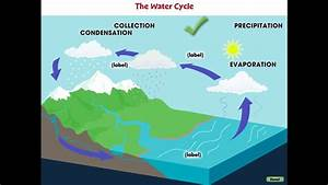 Cc7747 Global Warming Causes  The Water Cycle Mini