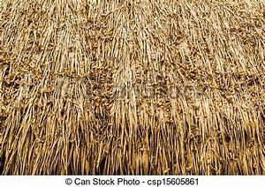 Toit En Paille : image de paille couvert chaume toit csp15605861 ~ Premium-room.com Idées de Décoration