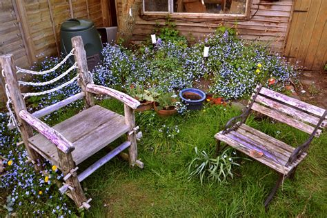 Backyard Chairs by Free Images Nature Grass Plant Lawn Flower Chair