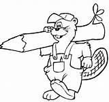 Beaver Coloring sketch template