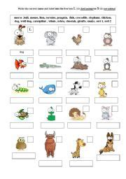 teaching worksheets the animals