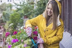 Regenschutz Lichtschacht Selber Bauen : blumenkasten sch tzen einen regenschutz selber bauen ~ Eleganceandgraceweddings.com Haus und Dekorationen