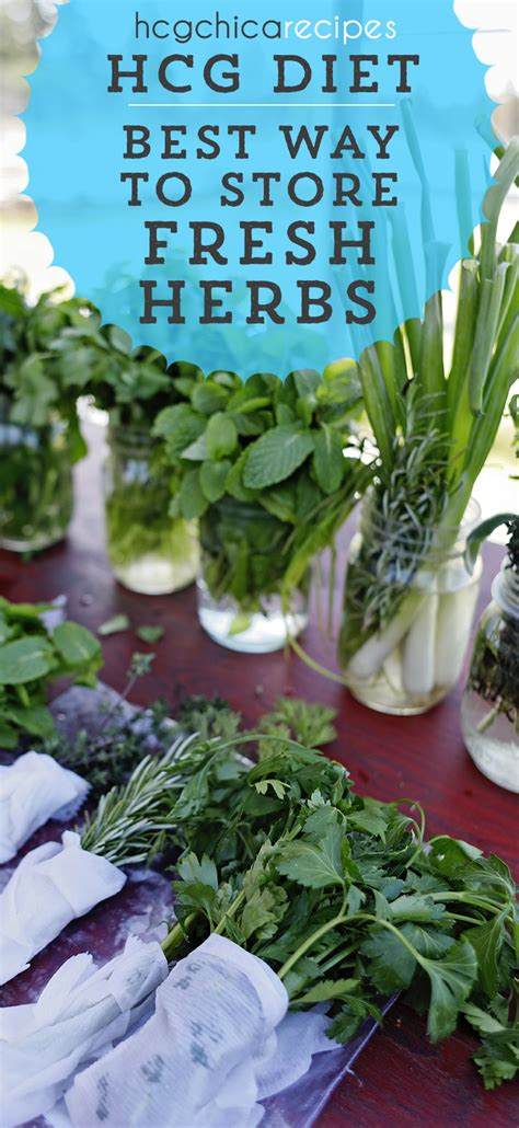 how to store fresh herbs to last on the hcg diet protocol