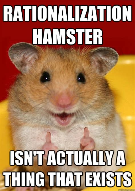 Hamster Memes - rationalization hamster isn t actually a thing that exists rationalization hamster quickmeme