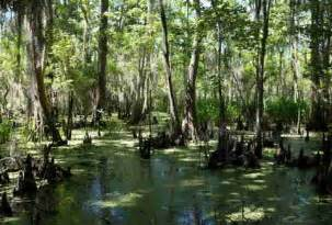 beautiful places  louisiana thrillist