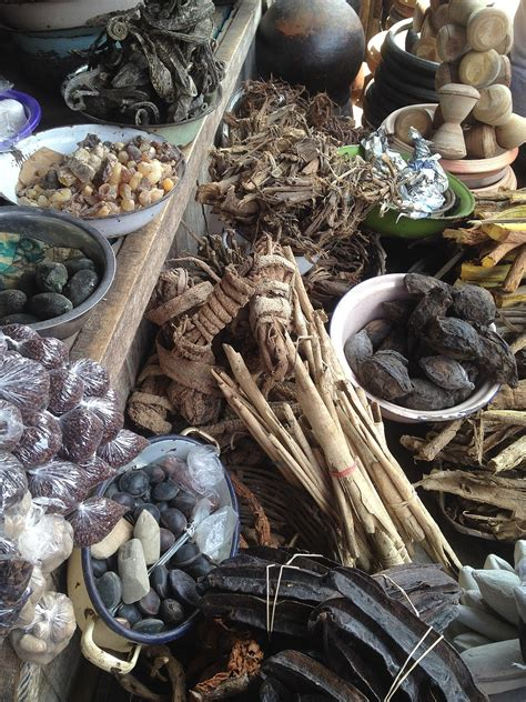 traditional african medicine wikipedia