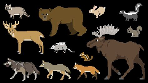 North American Forest Mammals