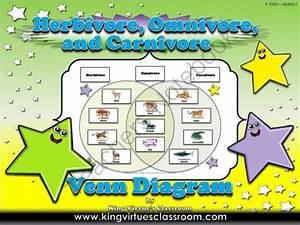 Animals  Herbivore  Omnivore  And Carnivore Venn Diagram