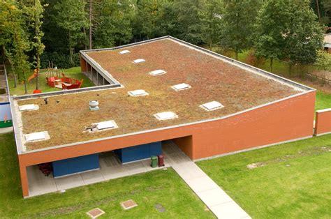 Dachbegruenung Natuerliche Klimaanlage by Fazszination Dachbegr 252 Nung