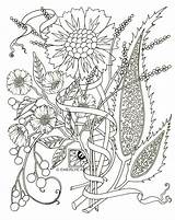 Coloring Pages Adult Paisley Adults Flower Flowers Printable Colouring Detailed Spring Books Easy Abstract Popular Azcoloring Step Emerlyearts Advanced Comments sketch template