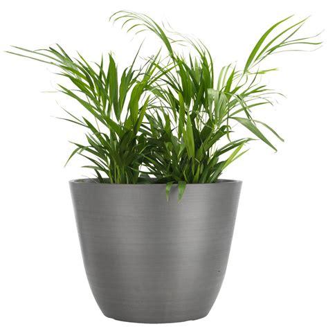 dining room blinds flower pot hveps d53xh40 grey jysk