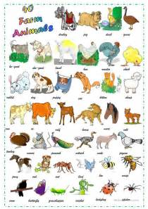 animals worksheet  esl printable worksheets