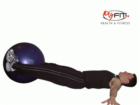 abdominal exercises list ab gallery and training notes