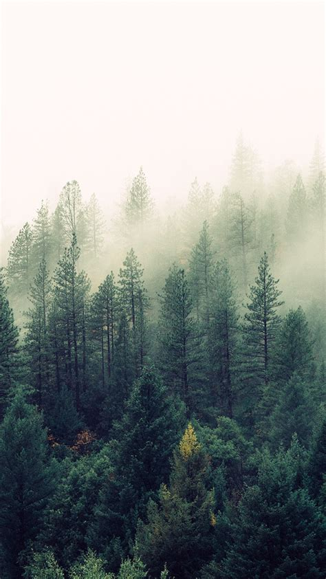 beautiful   nature iphone wallpapers preppy