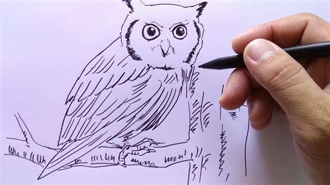 sketsa burung hantu pakai bijian