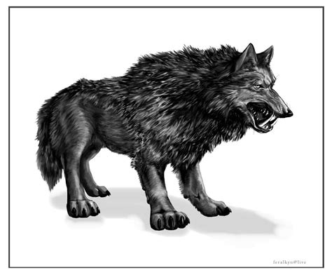 the saber wolf alaska s other cryptid
