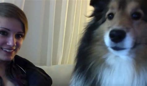 She Puts The Webcam On Her Dog The Dogs Reaction