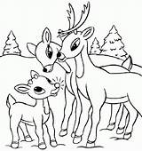 Deer Coloring Pages Reindeer Printable Buck Whitetail Drawing Tailed Colouring Skull Head Getcolorings Rudolph Antlers Realistic Sheets Tree Rated Drawings sketch template