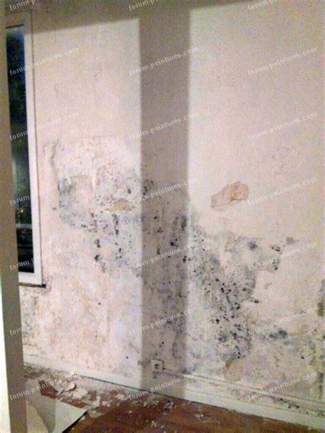 poser de la toile a peindre toile de verre mur enduire sur toile de verre passer d 39 un mur en relief toile anti fissure