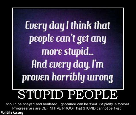 funny quotes  stupidity  ignorance quotesgram