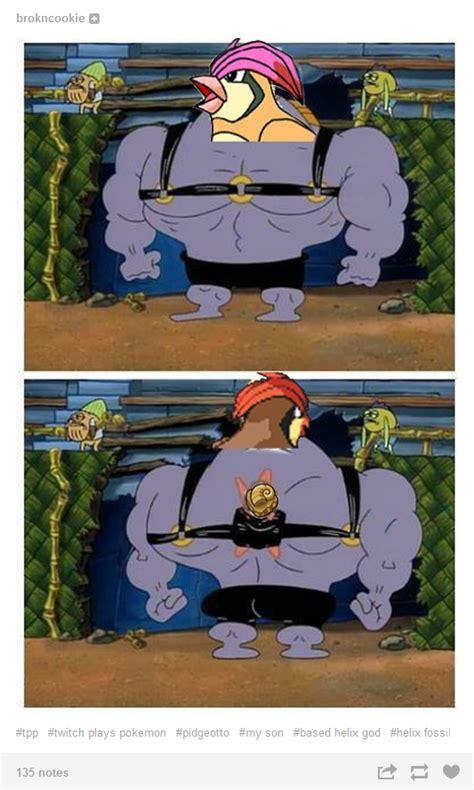 Know Your Meme Twitch Plays Pokemon - image 700323 twitch plays pokemon know your meme