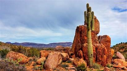 Desert Arizona Cactus Wallpapers Saguaro Backgrounds Rozenfelds