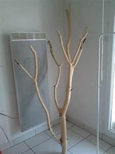 Achat Tronc Arbre Decoratif : tronc pour arbre chat ~ Zukunftsfamilie.com Idées de Décoration
