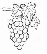 Grapes Coloring Pages Clipart Weintrauben Raskraska Vinograd sketch template